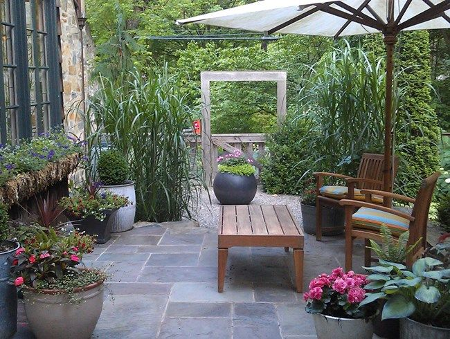 Cvw Like The Privacy Using Plants Outside Room Easy To Clean Floor Stone Stone House Wall Courtyard Gardens Design Cottage Garden Design Cottage Garden