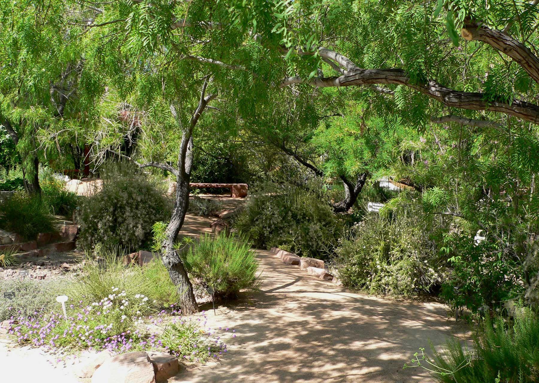 Springs Preserve Garden In Las Vegas, Nevada
