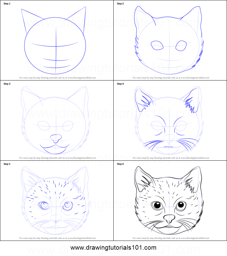 How To Draw A Cat Face Printable Drawing Sheet By Drawingtutorials101 Com Cat Face Drawing Cat Drawing Tutorial Cat Art Print