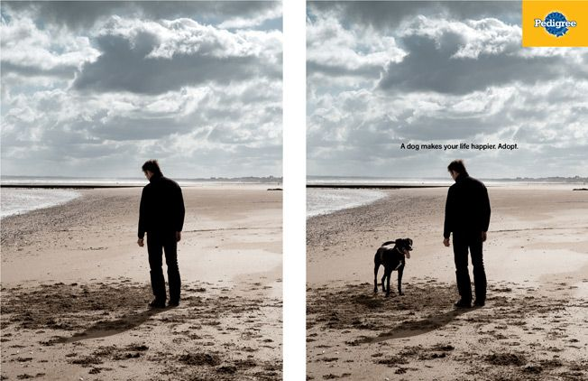 A Dog Makes Your Life Happier Adopt Pedigree Ad Featured In The