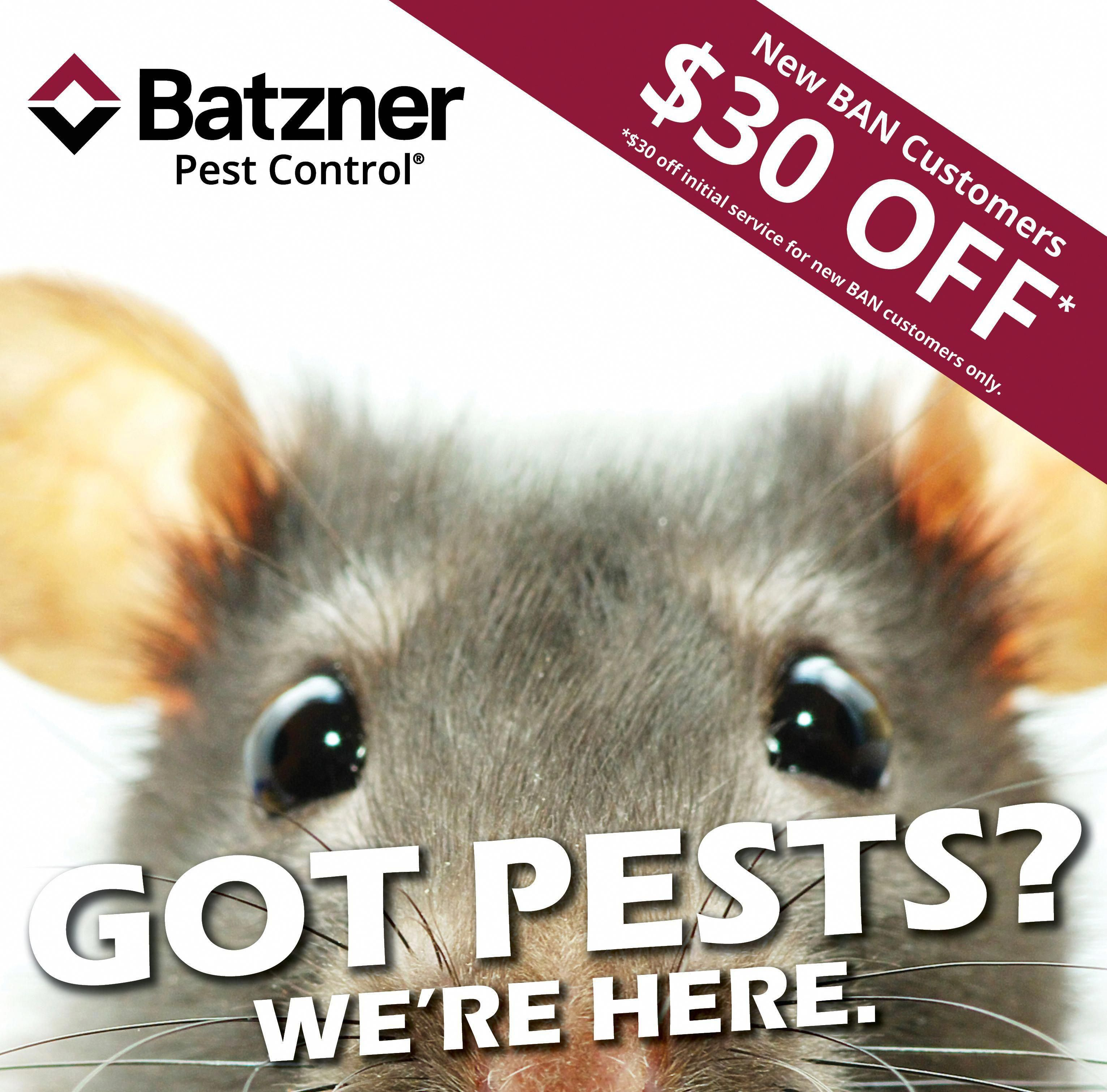 Rats Mice And Unicorns Call The Pest Control Experts In 2020 Pest Control Rat Control Pests