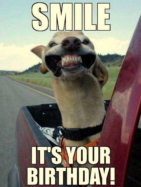 Happy Birthday Meme For Girlfriend Jpg 479 637 Cute Animals Animals Happy Dogs