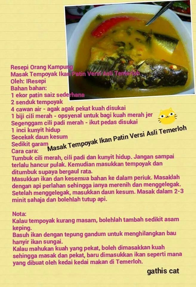 Masak Tempoyak Ikan Patin Savoury Dishes Malaysian Food Recipes