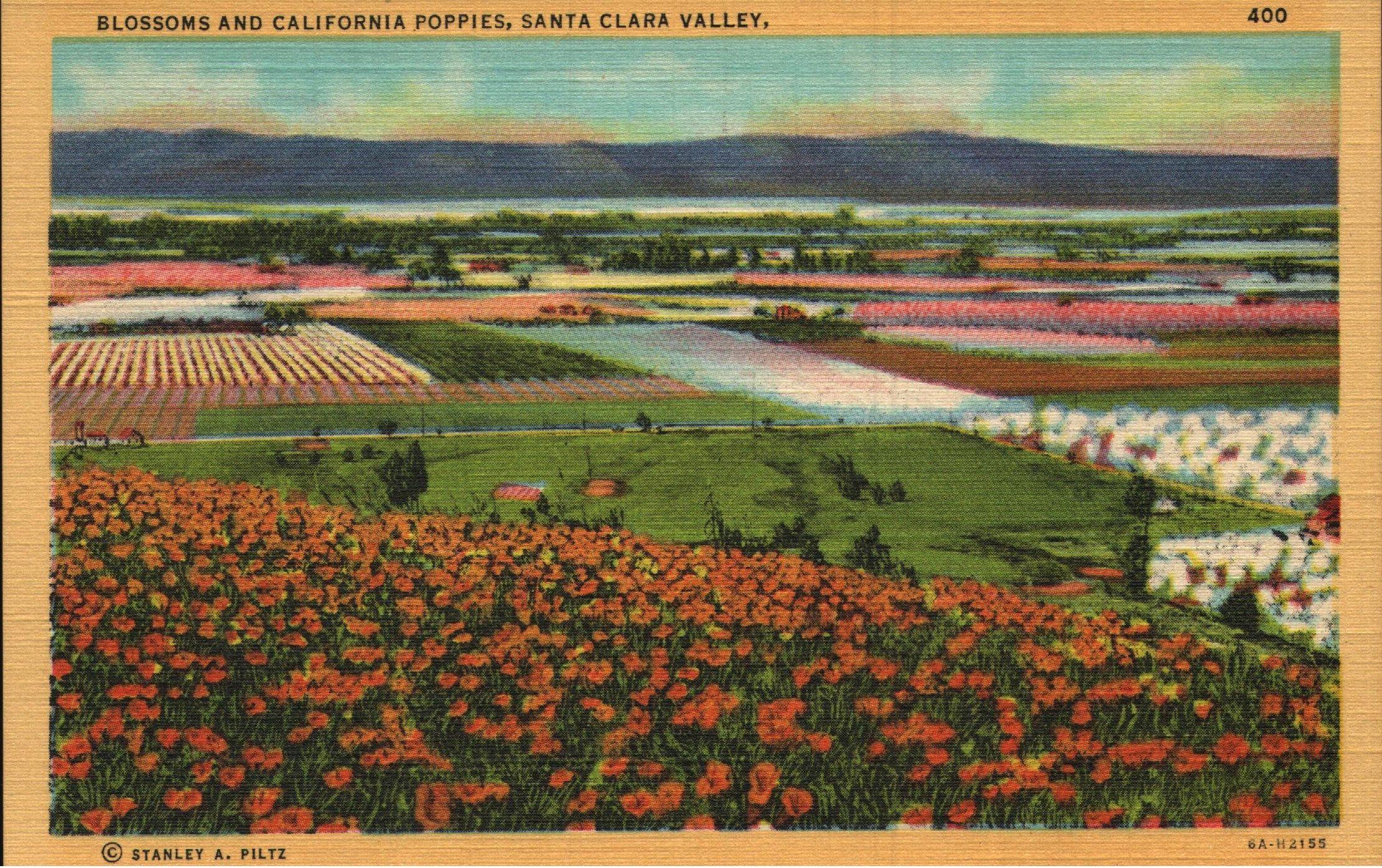 Vintage Linen Postcard Blossoms And Poppies Santa Clara Valley Etsy California Postcard Santa Clara Vintage California