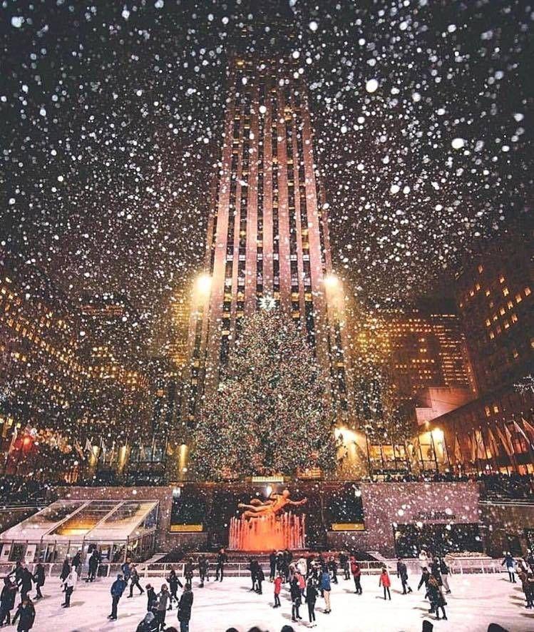 Der berühmteste Weihnachtsbaum in New York am Rockefeller Center