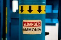 How to Get Rid of Ammonia Smell | Nifty | Pee smell, Urine