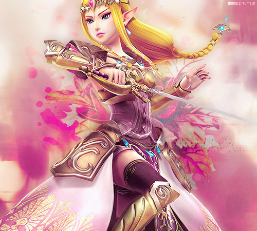 Warriors Don T Cry Pdf Book: Princess Zelda...maybe From Hyrule Warriors? Don't Take My