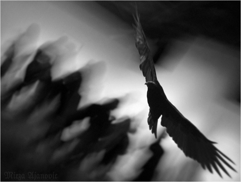 Das Jenseits Light And Darkness Counterpoints Chiaroscuro Art
