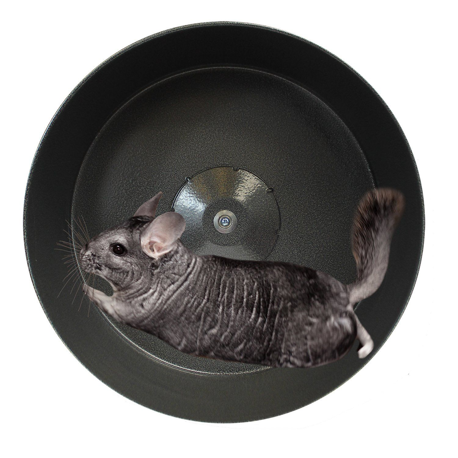 Best Chinchilla Wheel for Exercise Prairie dog, Small