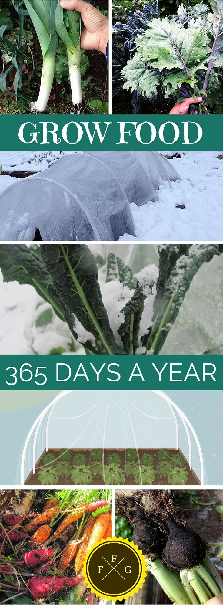How to Grow Food Year-Round | Pinterest | Rounding, Food and Gardens
