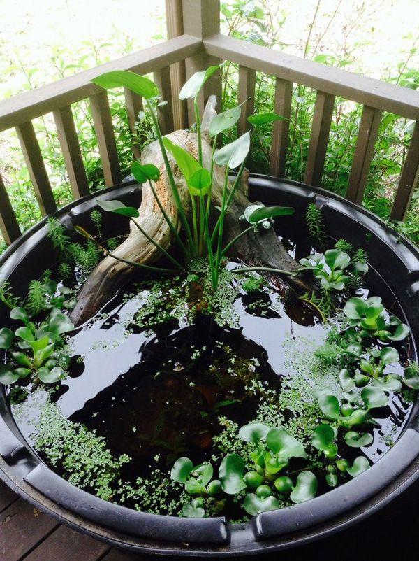 30 Fresh Mini Ponds For Little Garden Ideas Homemydesign Small Water Gardens Indoor Water Garden Container Water Gardens