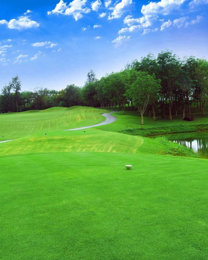 Golf Course Photography Background Green Lawn Lake Vinly