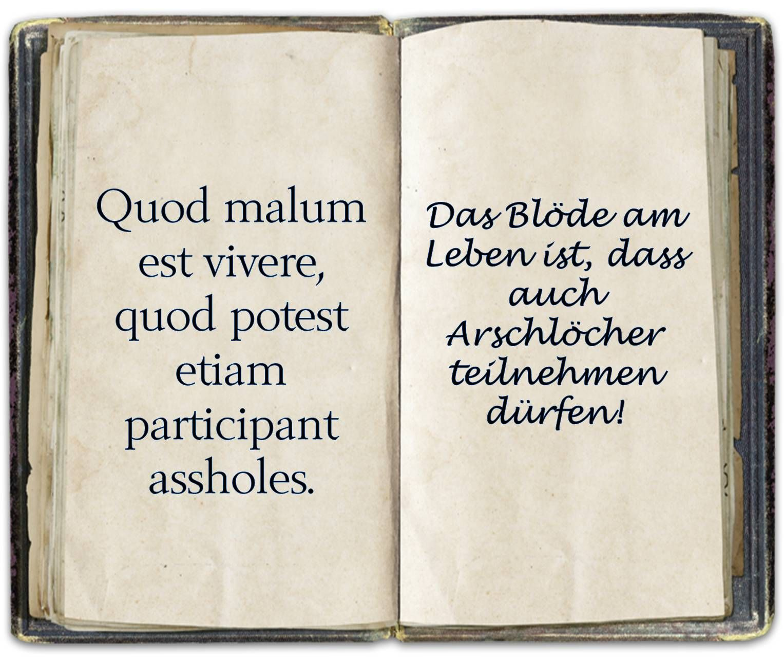 Spruch, Latein | Latein | Latin phrases, Sayings und Quotes