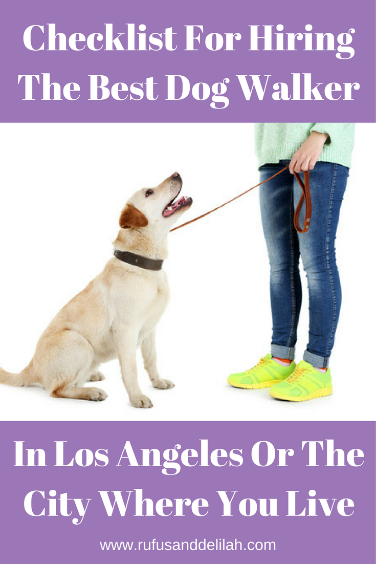 Checklist For Hiring The Best Dog Walker In Los Angeles Best Dogs Dogs Dog Walking