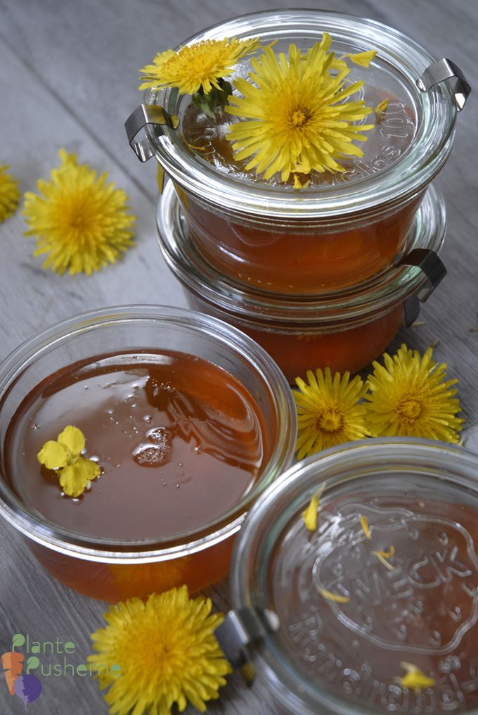 Vegan Dandelion Honey Recipe Honey Recipes Recipes Creamed Honey