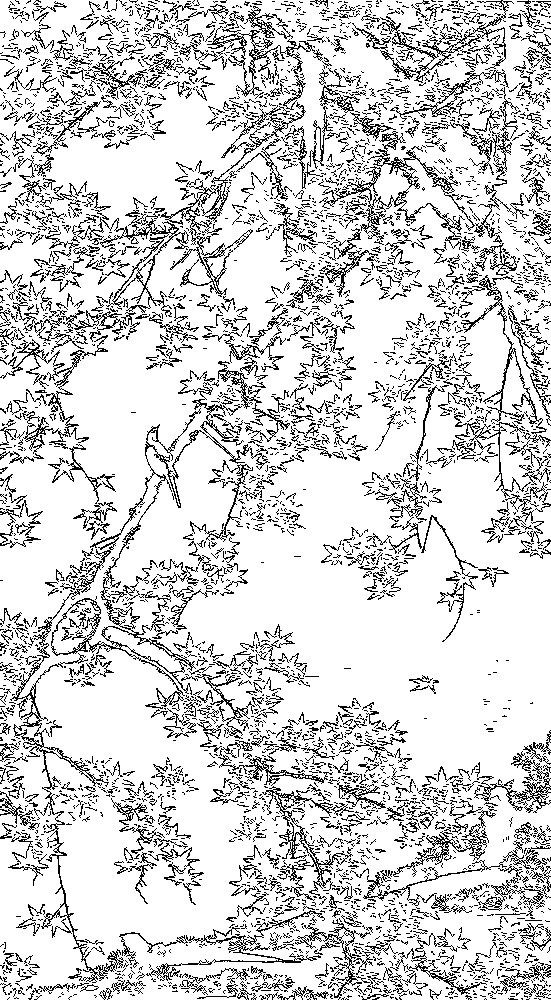 coloring for adults ito jakuchu 伊藤若冲 30 紅葉小禽図 001