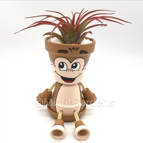 Monkey Business – Air Plant Holder with Plant