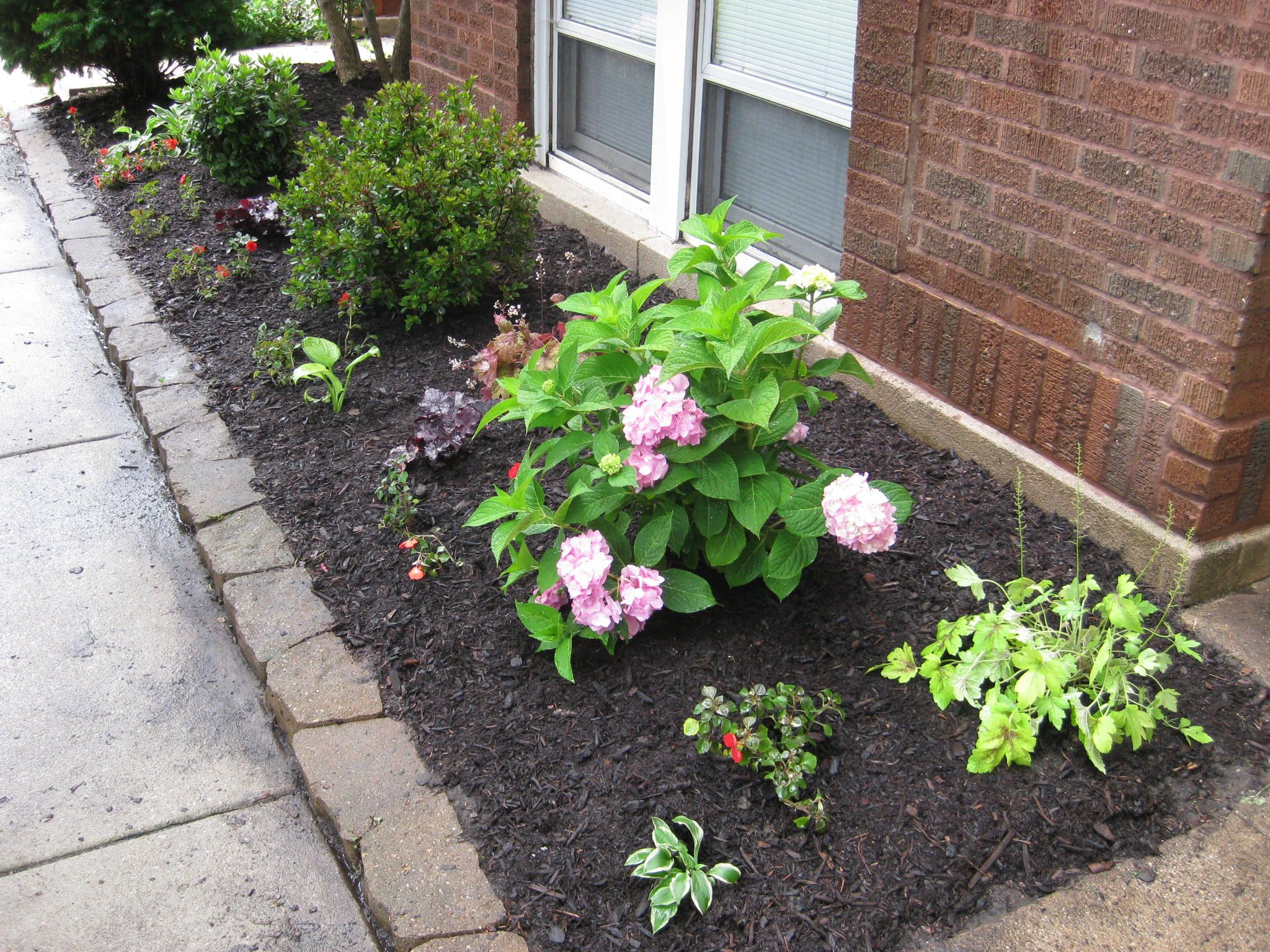 Elegant Front Yard Landscaping Ideas On A Budget