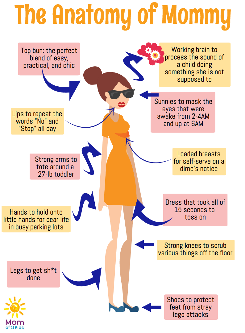 The Anatomy of Mommy - can you relate, moms?   Mommy Humor ...