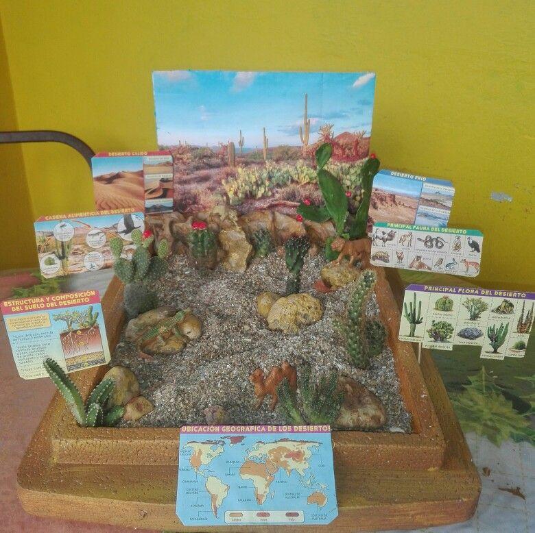 Maqueta Ecosistema Del Desierto Maquetas De Ecosistemas