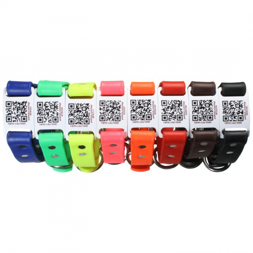 dogIDs has taken our most popular dog collar and made it smart. Check ...
