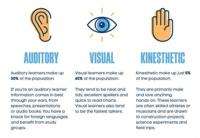 No you are not a visual/auditory/kinesthetic learner! | There ...