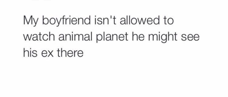Ha so true