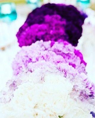 Weddinginspiration  #wedding#flowers#hydrangeas#purple#white#weddingflowers#weddingday#weddingdecor#weddingseason#weddinginspiration#weddingphotographer#weddingdress#loveflowers#hortensien#hochzeit#hochzeitsblumen#hochzeitsstrauss#hochzeitskleid#hochzeitsinspiration#hochzeitsinspirationen#instagram#igwedding by xoxo_n.c_love
