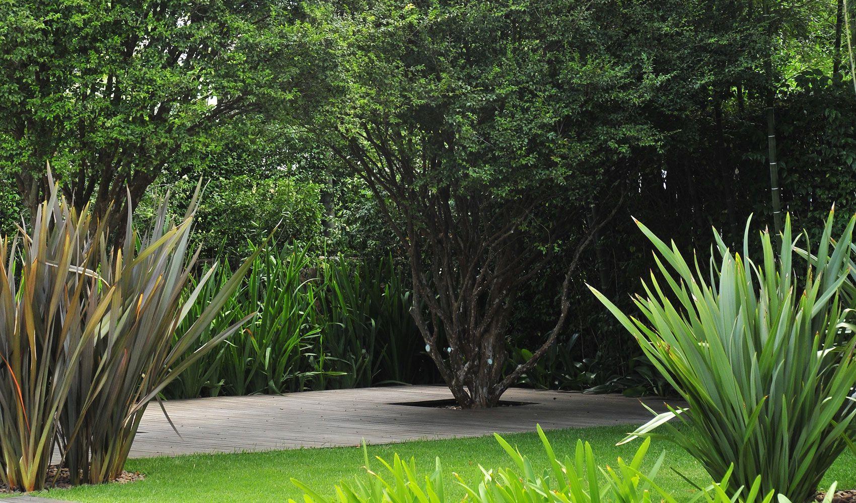 Resultado de imagen para jardines con formios jard n for Paisajismo jardines modernos