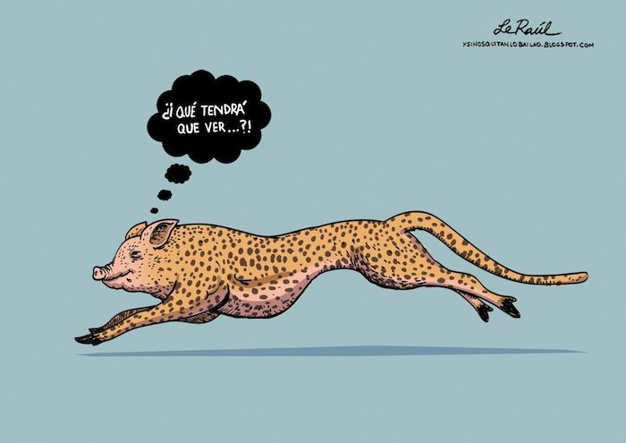 cerdipardo