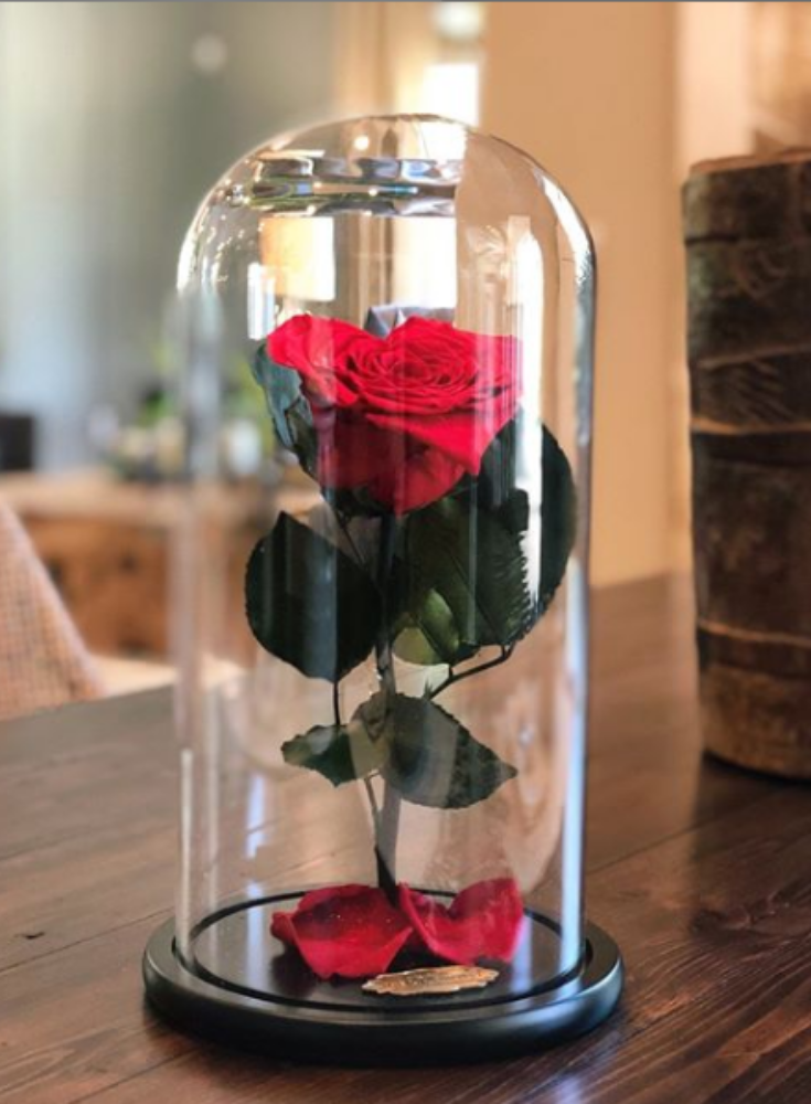Red With Crystal Dust Heart Shape Preserved Rose Beauty And The