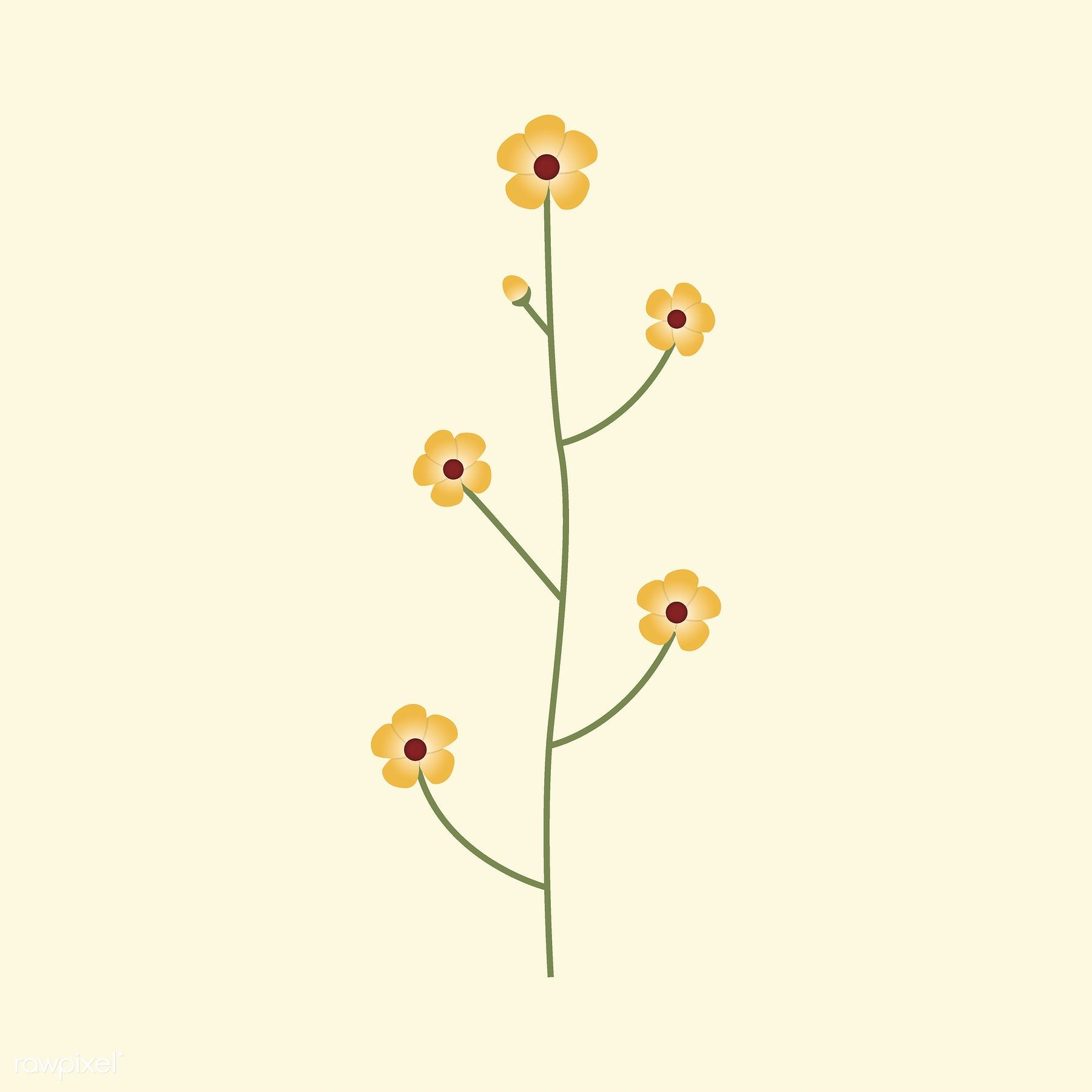 Wild Flower Vector Ilration Free Image By Rawpixel