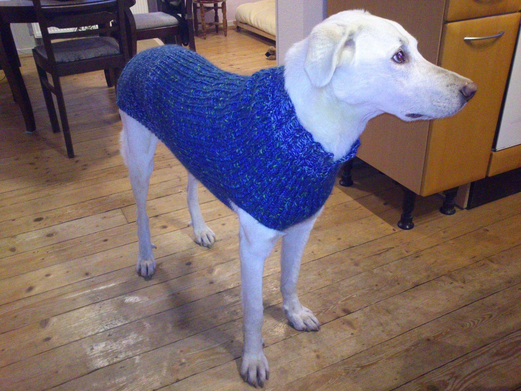 Hundepullover für große Rassen | Hundepullover | Pinterest | Rassen ...