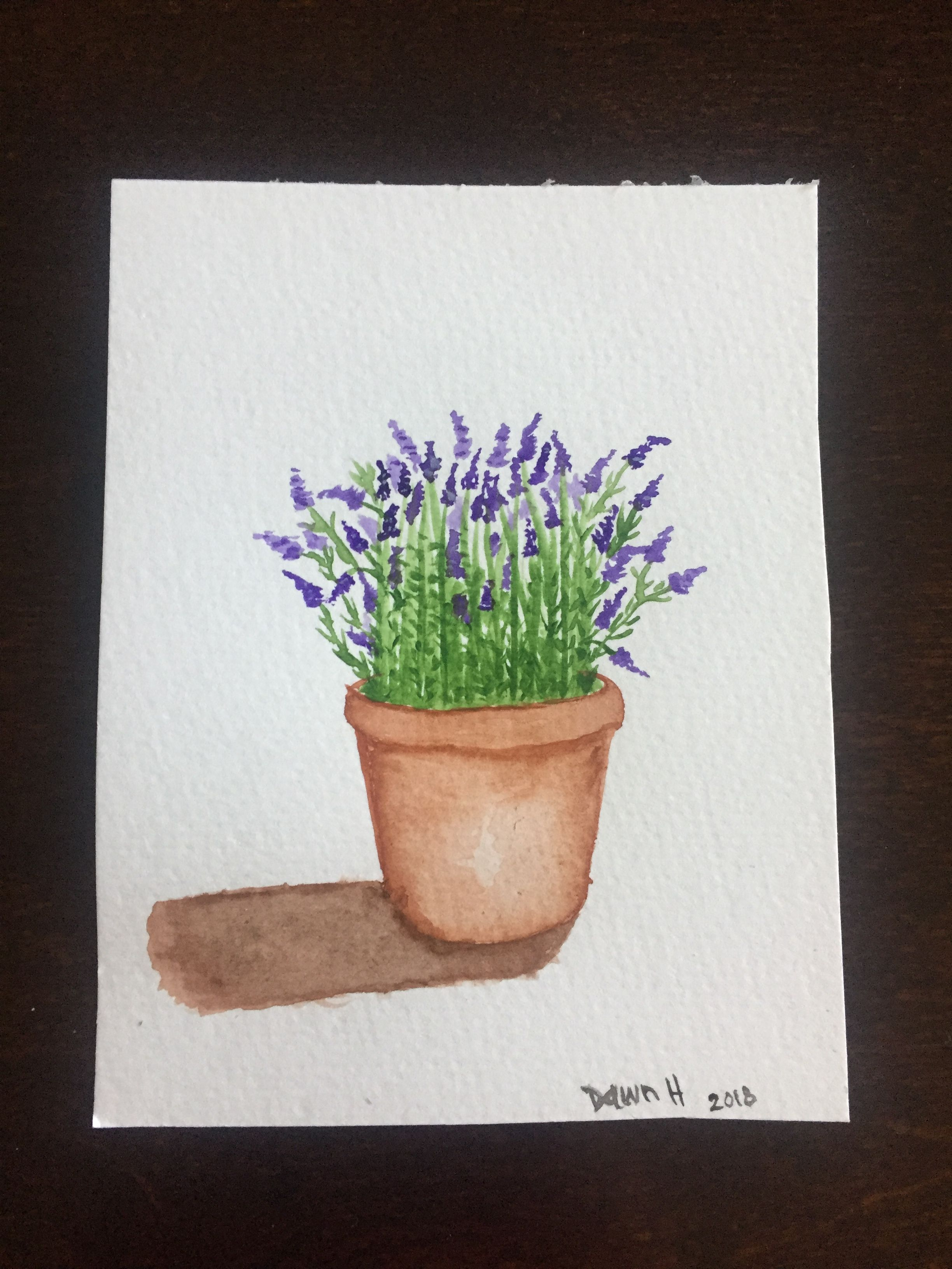 Potted Lavender Pencil Drawings Of Flowers Potted Lavender Flower Drawing