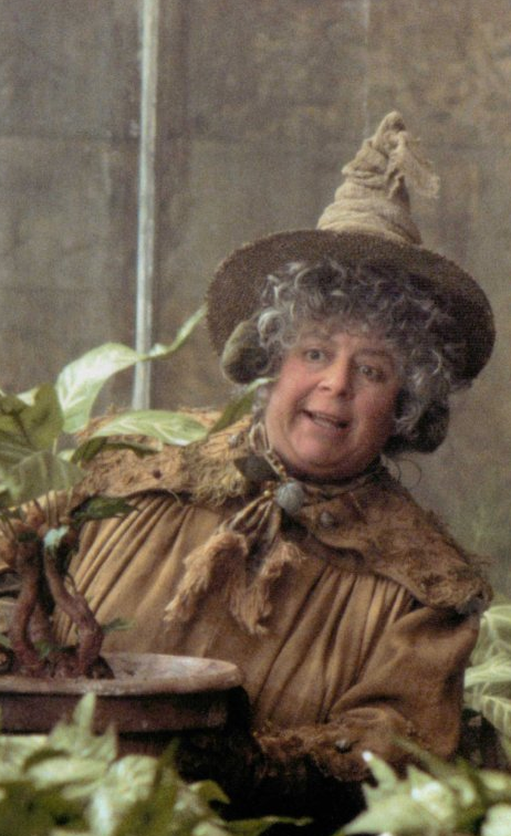Head Of Hufflepuff House Pomona Sprout The Herbology Professor