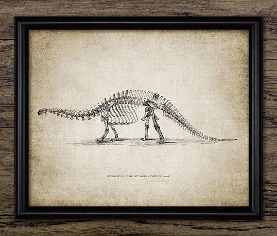 Brontosaurus skelet anatomie sauropode dinosaurus | Bram slaapkamer ...