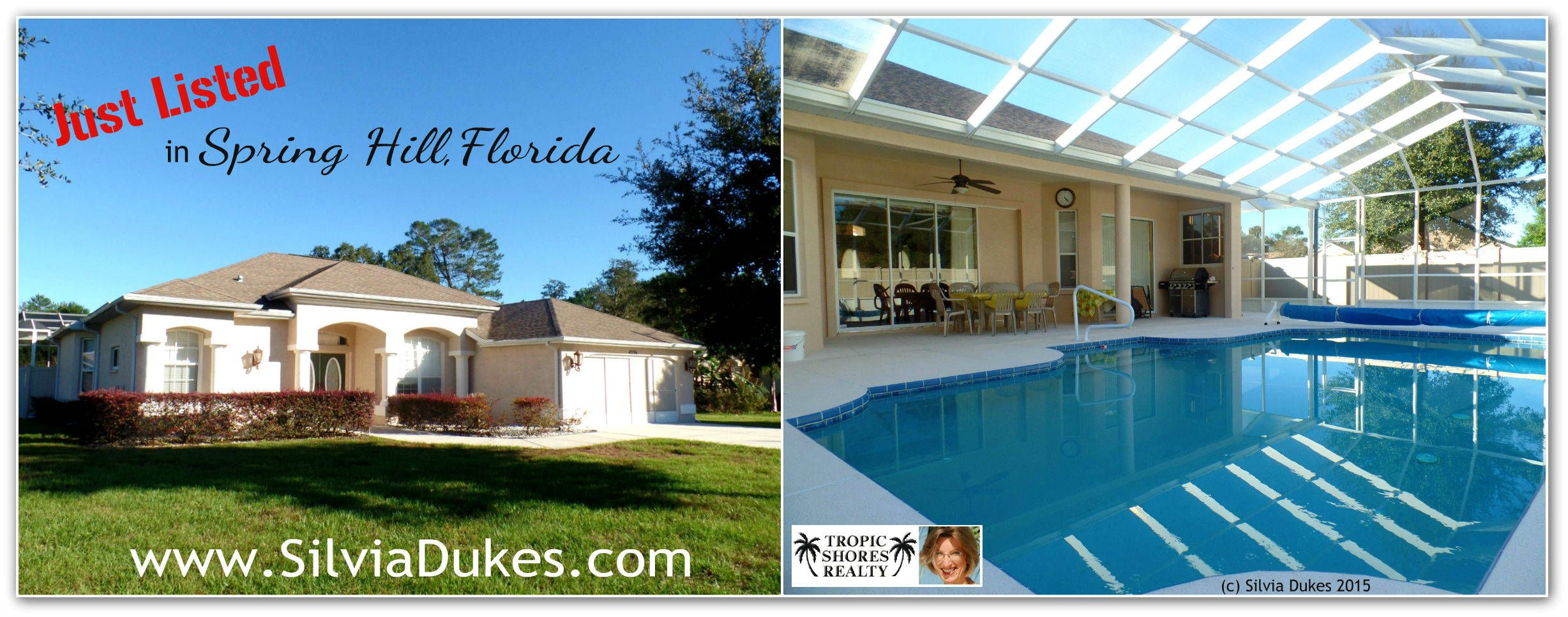 Three Bedroom Pool Home For Sale Spring Hill Fl 34606 Spring