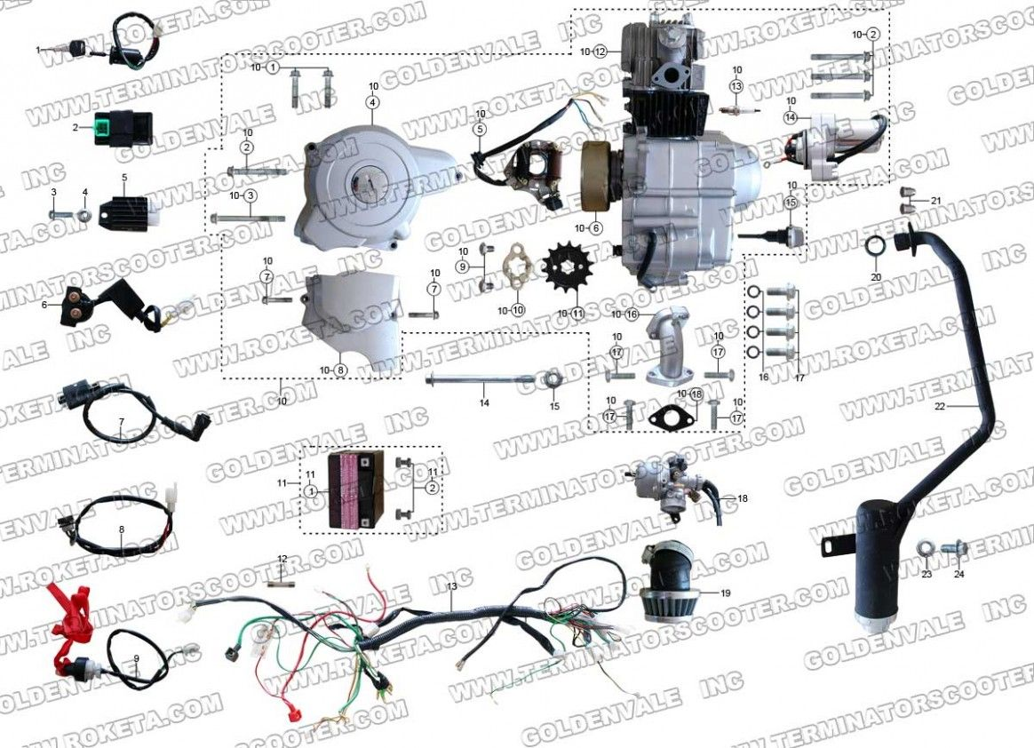 Pit Bike Engine Diagram Download Di 2020
