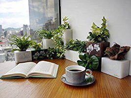 office flower pots. Creative Flower Pot Indoor Farming Interior Design Floral Plants Planter Home Office Desktop Decor (Green Pots N