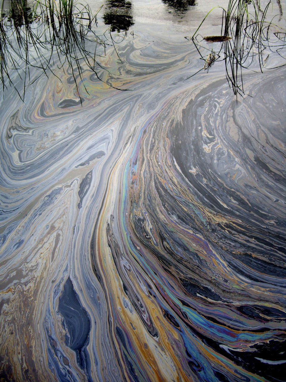 oil on water - incredibly sad and beautiful at the same time.