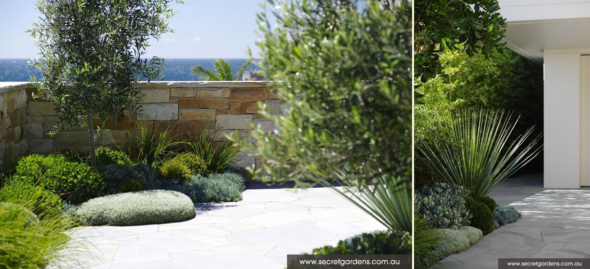 Secluded Green In Sydney S Eastern Suburbs Coogee By Secret Gardens Modern Landscaping Modern Landscape Design Landscape Design