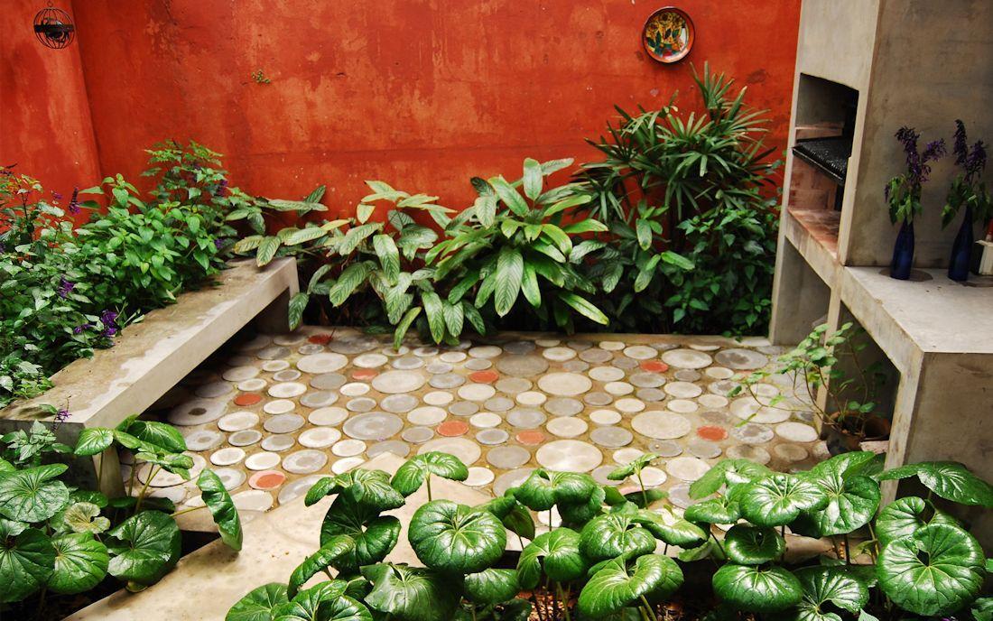 Plantas tropicales para jardin buscar con google for Plantas para patios
