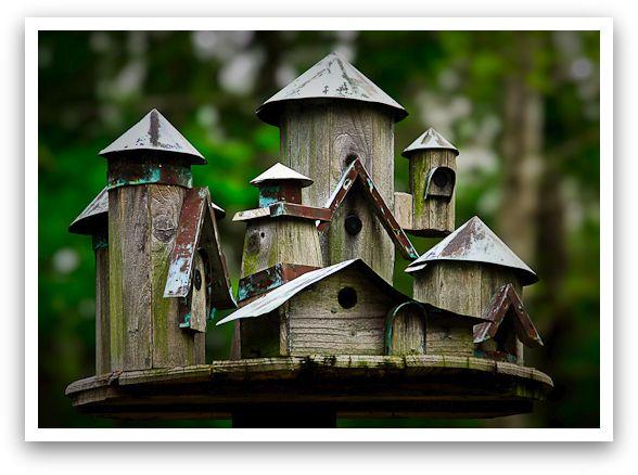 Bigger and better Texas Bird House