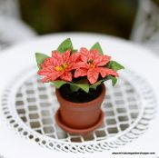 Potted Poinsettia Flower Cart Poinsettia Red Flowers