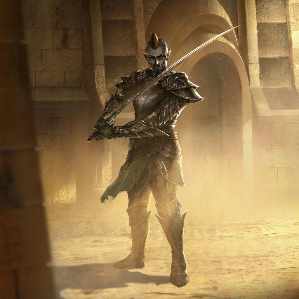 Dark elf assassin | Beyond the black gate in 2019 | Elder