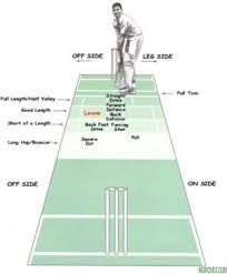 Image Result For Cricket Fielding Positions Cricket Club Cricket Score Scores