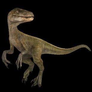 Velociraptor Jurassic World Alive Wiki Fandom In 2020 Velociraptor New Jurassic Park Jurassic Park World