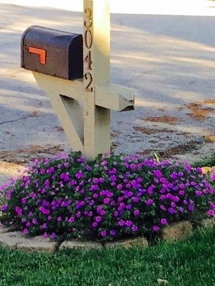 landscaping around mailbox post. flowers around our mailbox landscaping post d