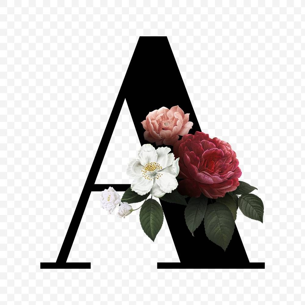 Download Premium Png Of Classic And Elegant Floral Alphabet Font Letter A In 2020 Fonts Alphabet Lettering Alphabet Fonts Lettering Fonts