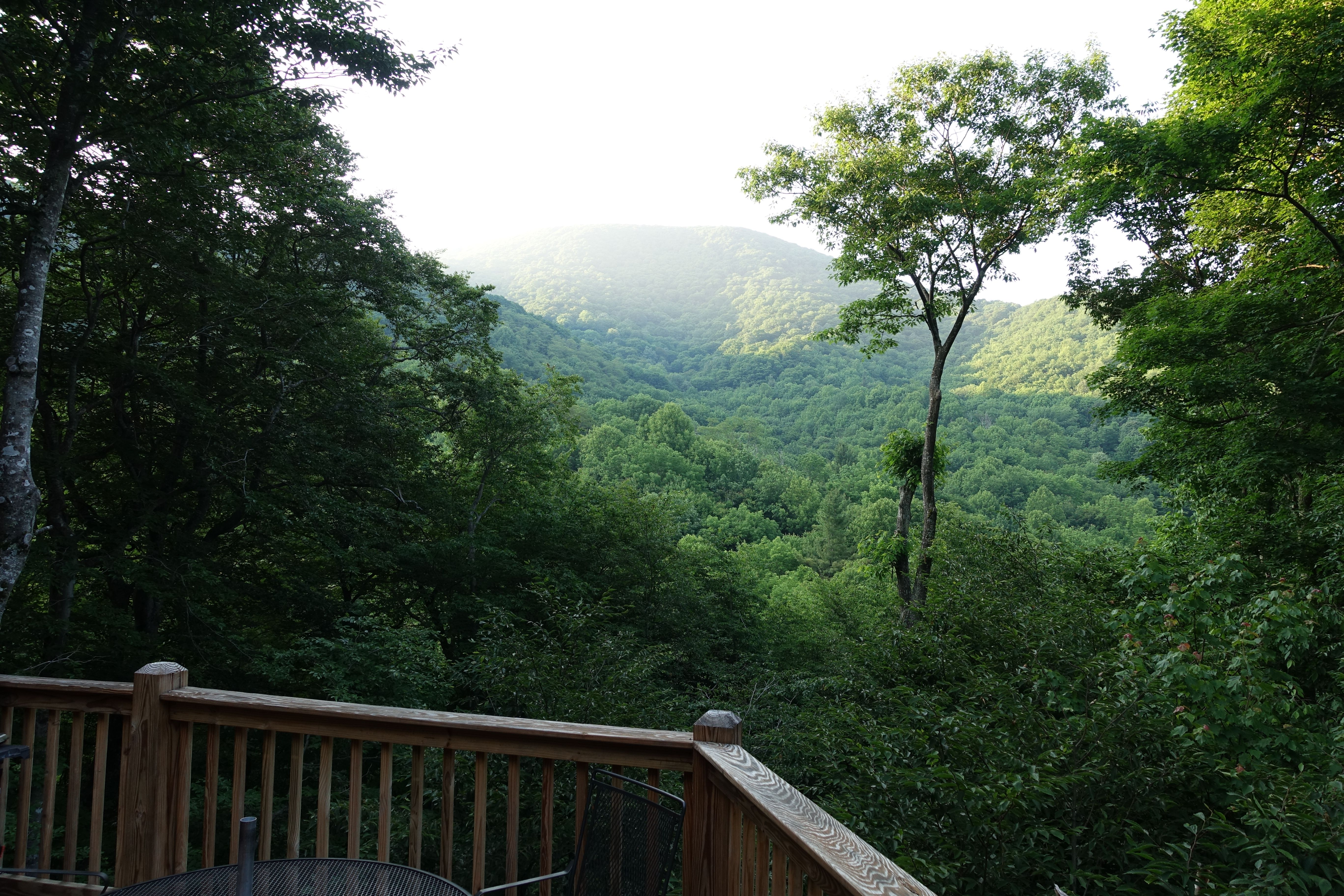 trout fishing game cabin boone carolina mountain hot with tub rentals north room large asheville cabins groups log for